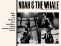 Noah And The Whale Official Website
