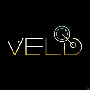 http://www.festivalsearcher.com/images/logos_l/veld_music_festival_l.jpg